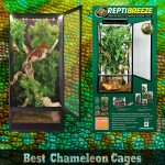 The Best Chameleon Cages In 2021
