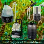 Best Chameleon Humidifiers & Foggers In 2021