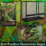 Best Panther Chameleon Cages In 2020